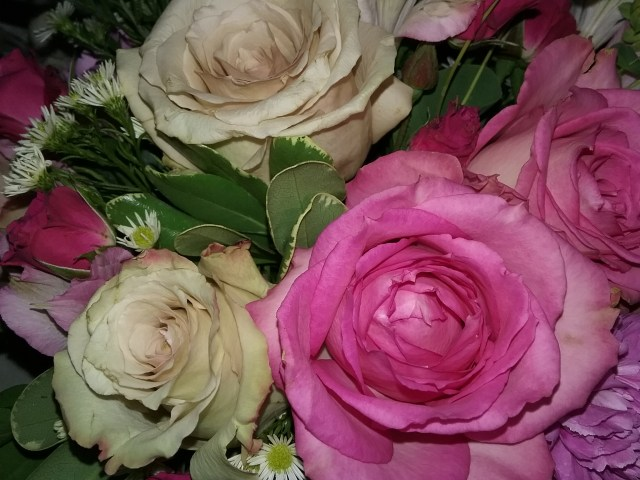 Bouquet of roses, by Mary Warner, May 10, 2020.