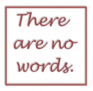 There-are-no-words-300x292