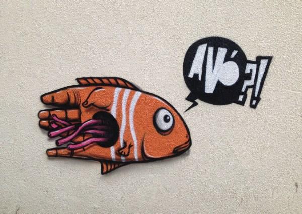 AVO?Fish