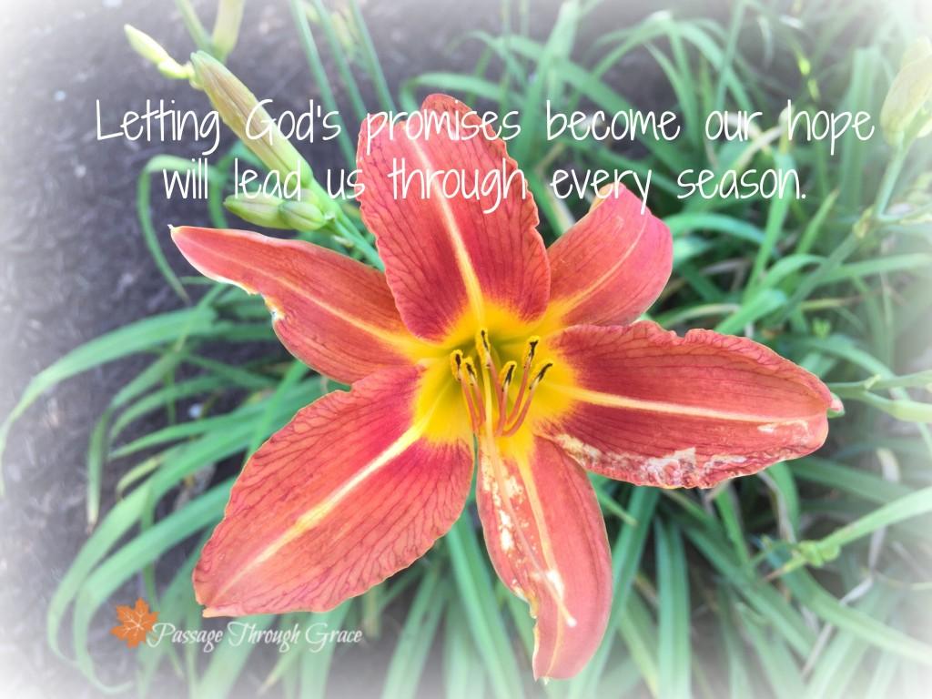 seasons and promises