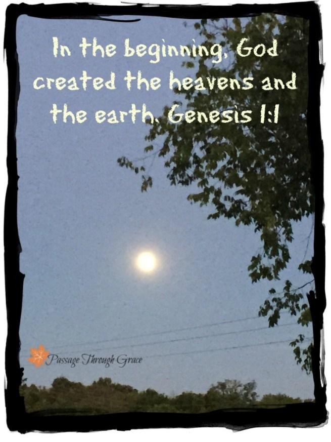 Genesis 1-1