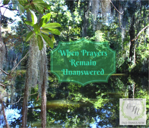 When Prayers Remain Unanswered~Perseverance Series Part 3