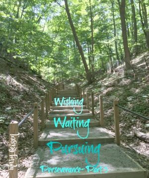 Wishing, Waiting, and Pursuing ~ Perseverance Part 5