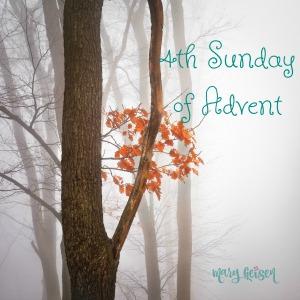Sabbath Offerings ~ 4th Sunday of Advent