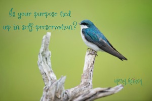 Is Your Purpose Tied Up in Self-Preservation?