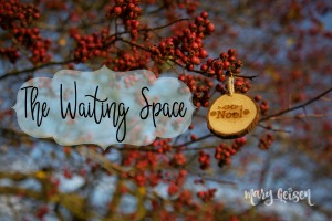 The Waiting Space ~ Advent 2018