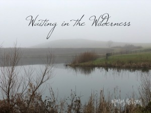 Waiting in the Wilderness