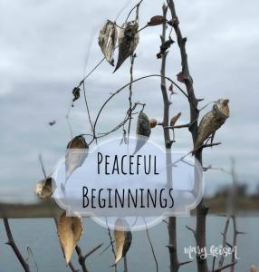 Peaceful Beginnings