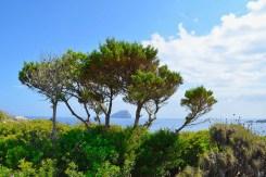 Hytra Island, Kythera