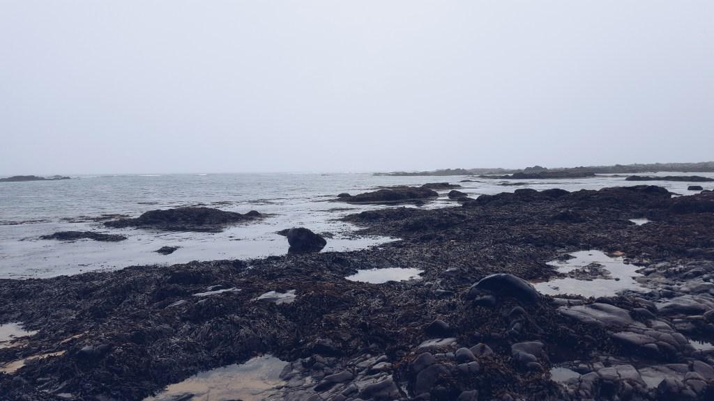 Snæfellsnes - Ytri Tunga beach