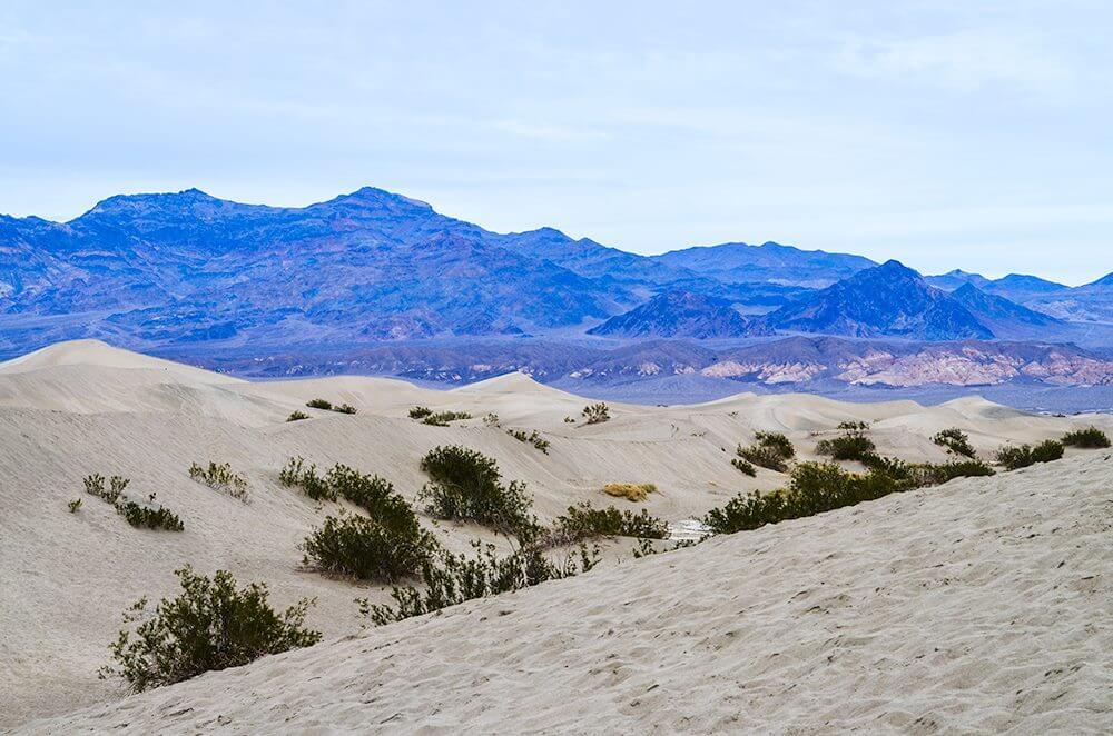 Mesquite Flat Sand Dunes - Death Valley National Park