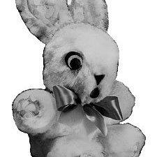 Pretty Cuddle Bunny