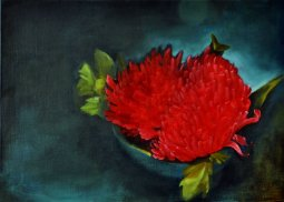 Red Chrysanthemum 01