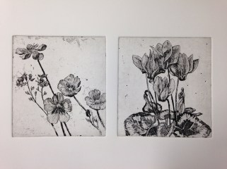 Proofs of etchings