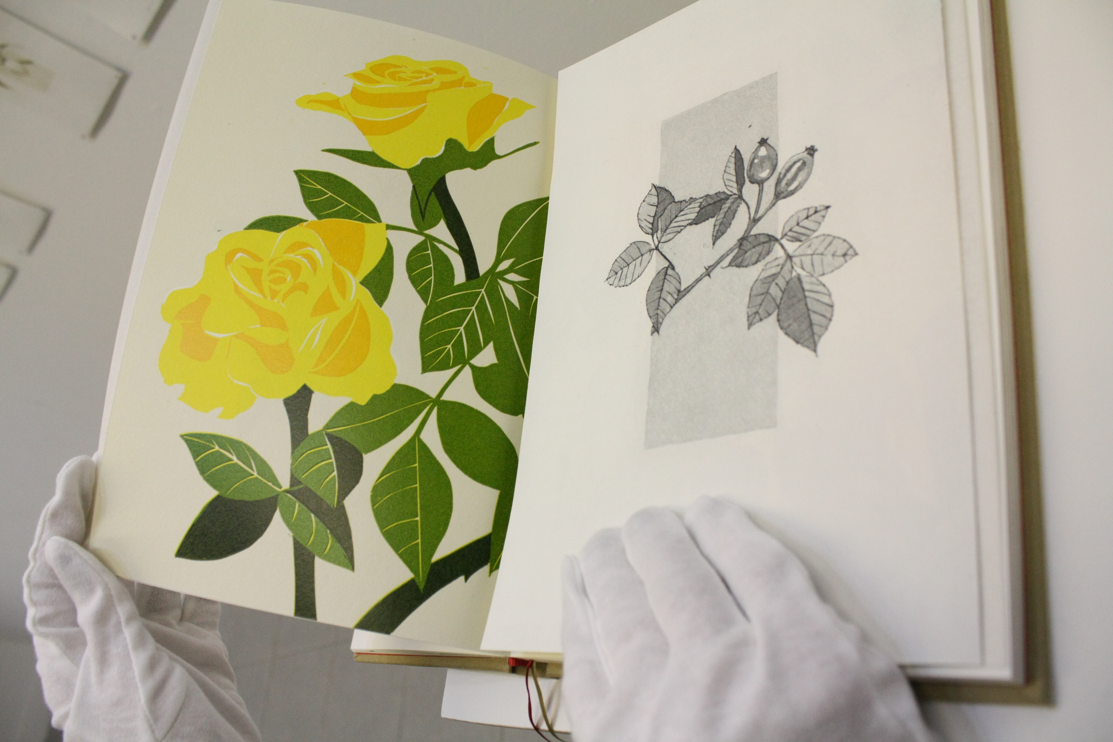 Etching 'Monday I' opens to three page linocut