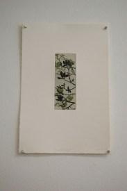 Magnolia Study II