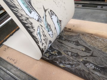 The third plate is printed