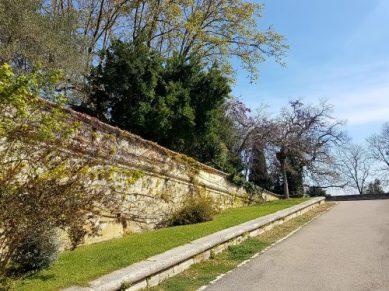 The Rocher des Doms park. Zig-zagging