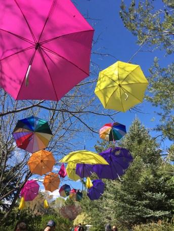More floating umbrellas