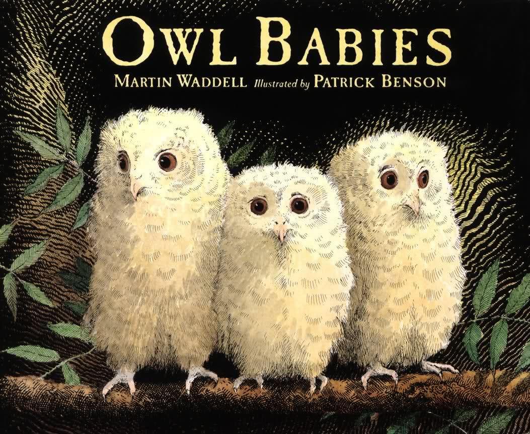 Owl Babies Printable Worksheets