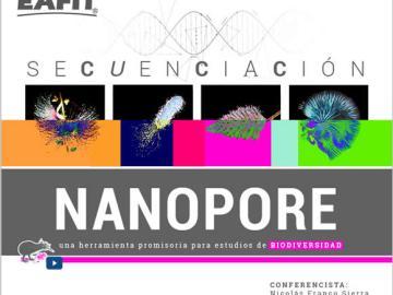 Nanopore31Jul2017_home