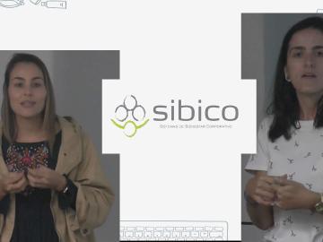 Sibico16Mayo2019