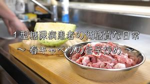 豚肩ロース キャベツ レシピ
