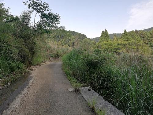 舗装された坂を上って行く。