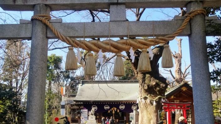 Фото, храм, япония