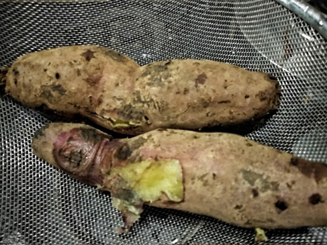 Boiled Sweet Potato. Remove skin once they cool down