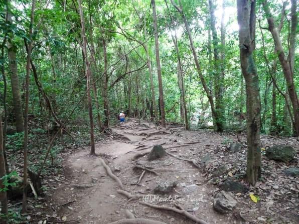Trekking_Erawan