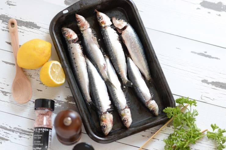 sardines-blogger-recipe