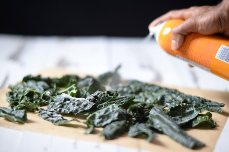 air-fried-kale-chips-home-made-recipe