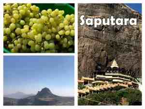 Travel to Saputara & Saptashrungi Gad – A Short Break