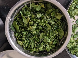 Sun dried moringa leaves