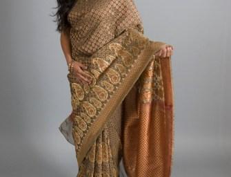 Hire a Sari
