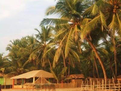 Agonda Beach 2