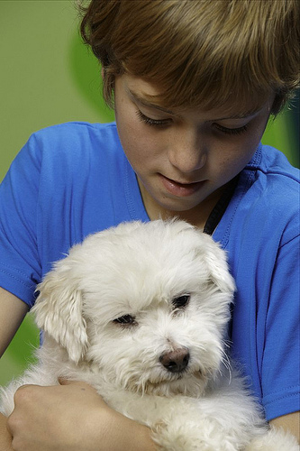 child holding a dog