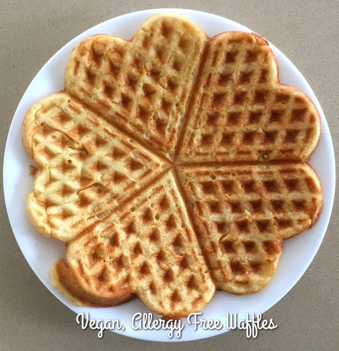 Vegan Gluten-free & Sugar-free Waffles