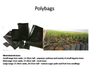 polly-bags