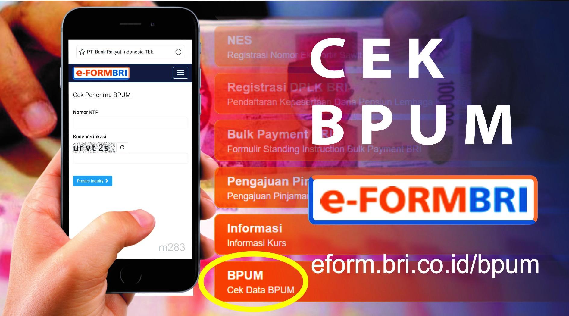 Cek Status Penerima BPUM Melalui e-Form BRI