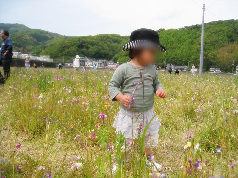 花畑に立つ子ども