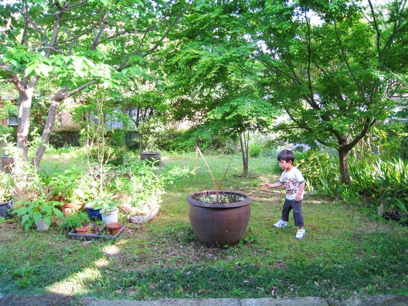 緑の多い庭で遊ぶ子供