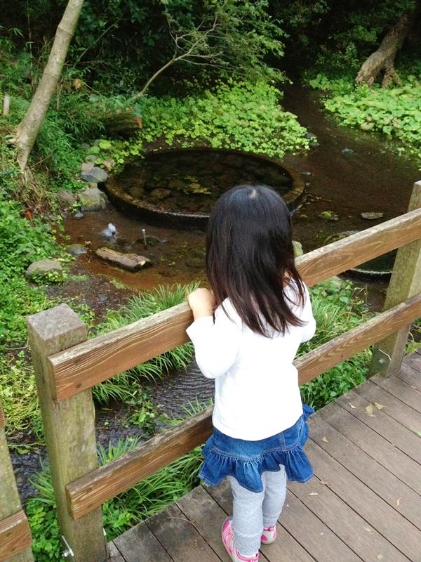 橋から池を見る少女