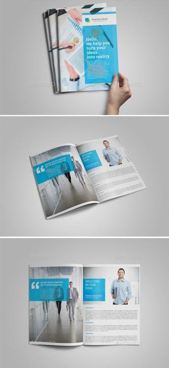 Corporate Brochure Company Profile 31