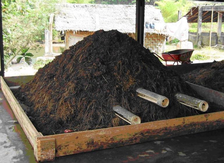 penyubur tanaman pupuk kompos