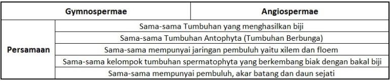 persamaan-gymnospermae-dan-angiospermae dalam bentuk tabel