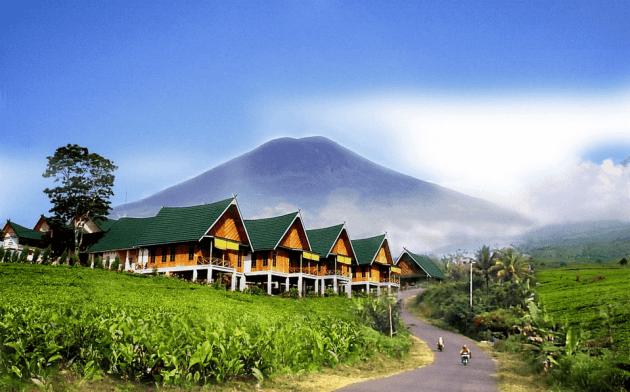 Objek Wisata Palembang Gunung dempo & Air Terjun Bidadari