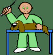 Tos de las perreras: mejor vacunar - HeelVet