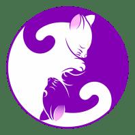 Artrosis en perros: patología degenerativa - HeelVet